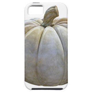 Pale Pumpkin iPhone 5 Cases