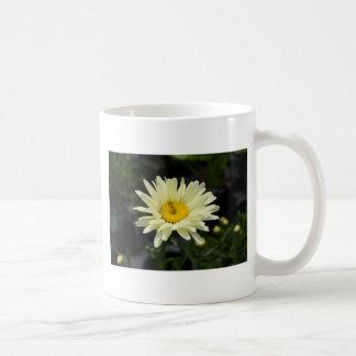 Pale Yellow Daisy Coffee Mug