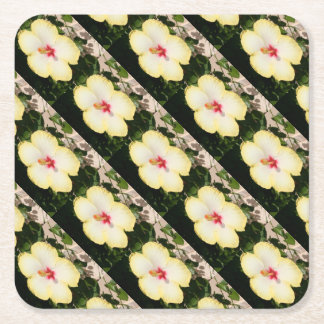 Pale Yellow Hibiscus Flower - Front View Square Paper Coaster