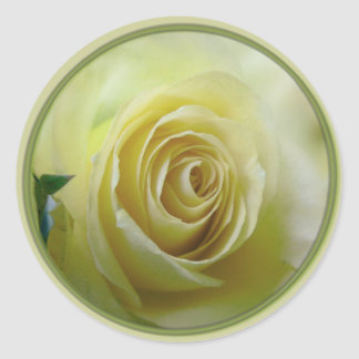 pale yellow rose classic round sticker