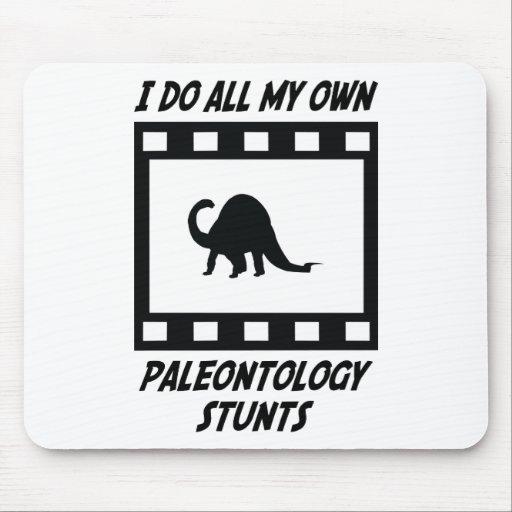 Paleontology Stunts Mouse Mats