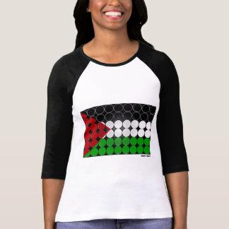 Palestine Flag Circle 2 T-Shirt