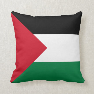 Palestine Flag pillow
