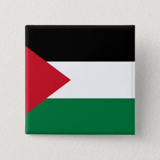 Palestine, Palau flag 2 Inch Square Button