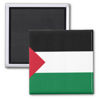 Palestine - Short Triangle, Palau flag Magnet