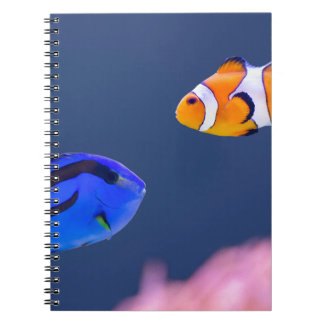 Palette surgeonfish and clown fish swimming notebook