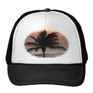 Palm at Sunrise Trucker Hat