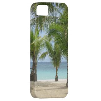 Palm beach iPhone 5 case