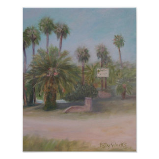 PALM COAST VILLAS  Poster
