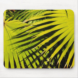 Palm Fronds Mouse Pad