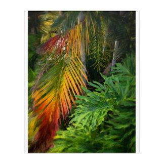 """Palm Glow Acrylic Wall Art, 16"""" x 20"""" Acrylic Print"""