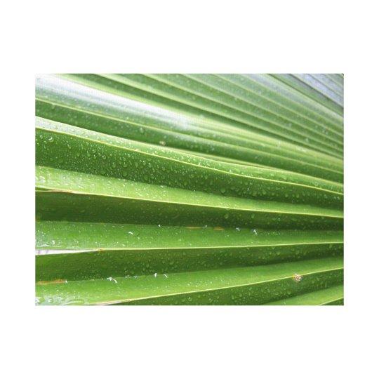 Palm in the rain canvas print