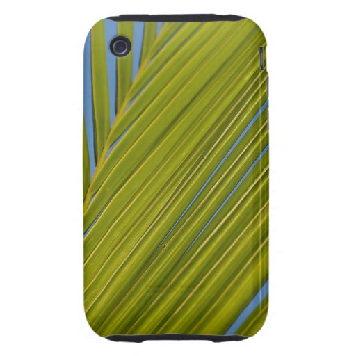 Palm Leaf iPhone3 Case