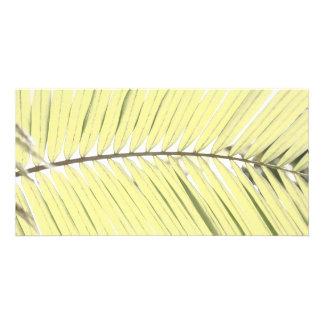 Palm leaf custom photo card