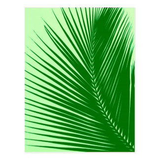 Palm leaf - emerald and lime green postcard