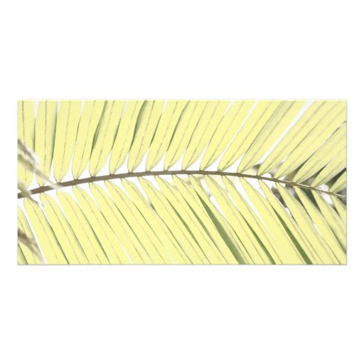 Palm leaf personalized photo card