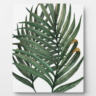 Palm leaves t-shirt plaque