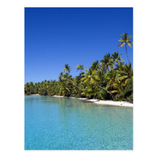 Palm lined beach Cook Islands 2 Postcard