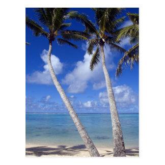 Palm lined beach Cook Islands Postcard