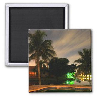 Palm Magnet