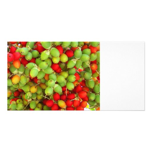palm nuts green and red. photo cards