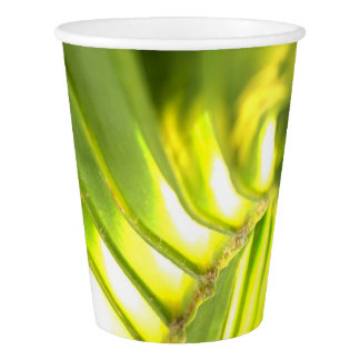 Palm Paper cup