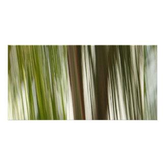 Palm Rain Customized Photo Card