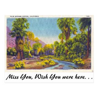 Palm Springs Canyon, California Postcard