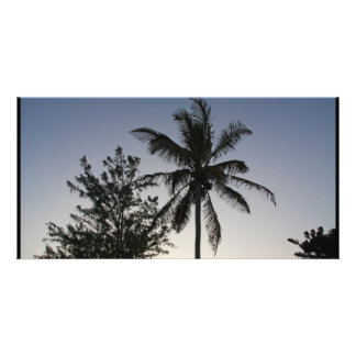 Palm Sunset Customized Photo Card