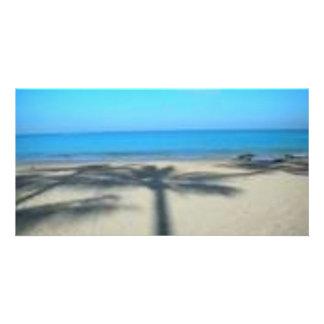 Palm tree and beach photo cards