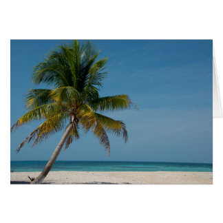 Palm tree and white sand beach  2 card