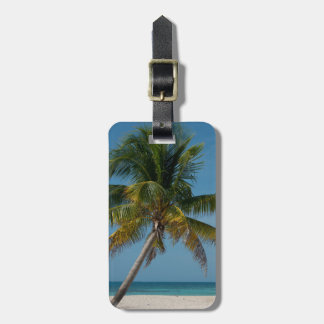 Palm tree and white sand beach  2 luggage tag