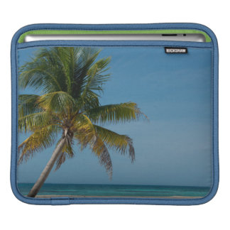 Palm tree and white sand beach  2 sleeves for iPads