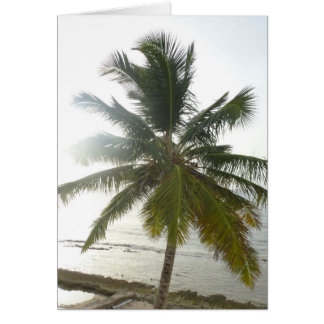 Palm Tree at Dawn Card
