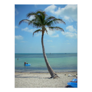 Palm Tree at the Beach Poster