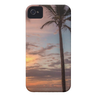 Palm Tree Beside the Sea Shore during Sunset iPhone 4 Case