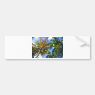 Palm tree bumper sticker
