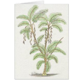 Palm Tree Calm Notecard