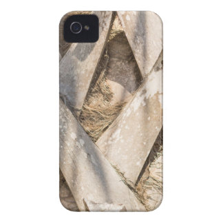 Palm Tree Close Up Detail Abstract Tight Crop iPhone 4 Cases
