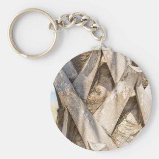 Palm Tree Close Up Detail Abstract Tight Crop Keychain
