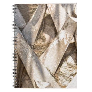 Palm Tree Close Up Detail Abstract Tight Crop Spiral Notebook