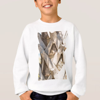 Palm Tree Close Up Detail Abstract Tight Crop Sweatshirt