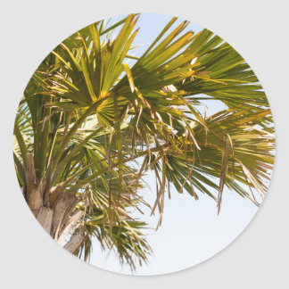 Palm Tree from the East Coast famous Myrtle Beach Classic Round Sticker