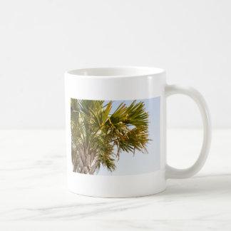 Palm Tree from the East Coast famous Myrtle Beach Coffee Mug