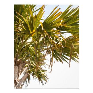 Palm Tree from the East Coast famous Myrtle Beach Letterhead