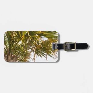 Palm Tree from the East Coast famous Myrtle Beach Luggage Tag