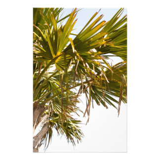 Palm Tree from the East Coast famous Myrtle Beach Stationery Paper