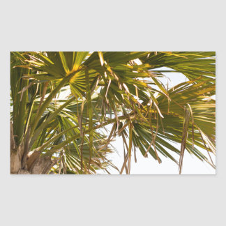 Palm Tree from the East Coast famous Myrtle Beach Sticker