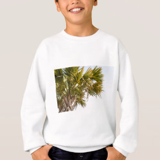 Palm Tree from the East Coast famous Myrtle Beach Sweatshirt