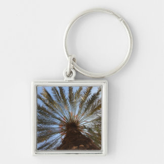 Palm Tree From Under 2 Silver-Colored Square Keychain